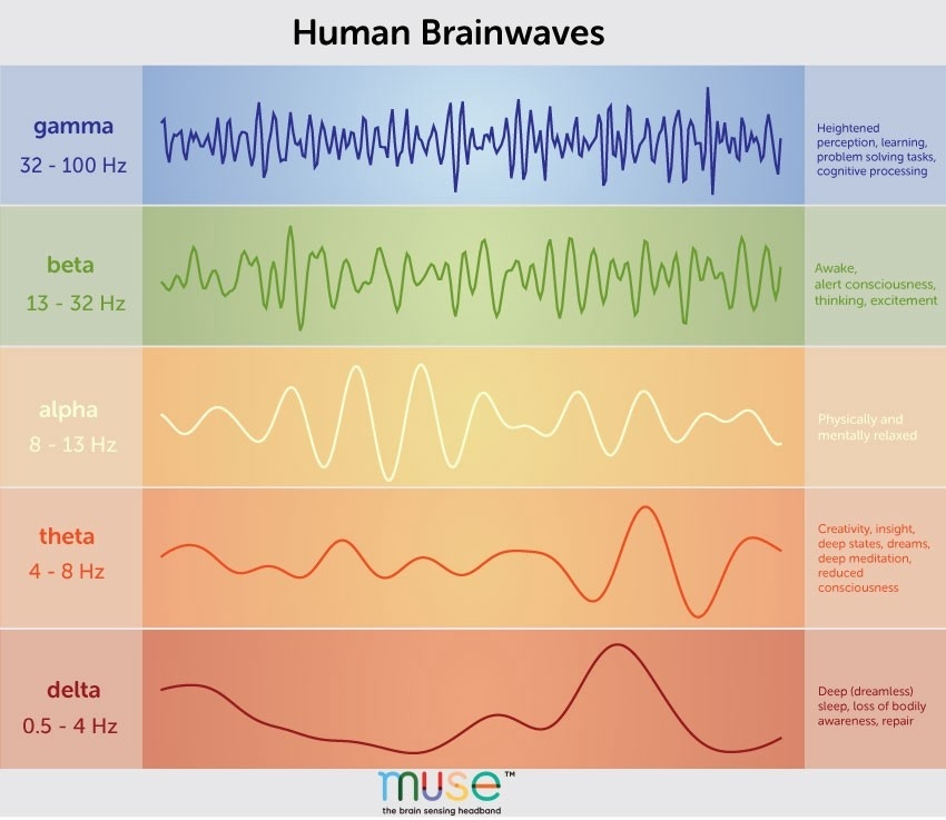 a person who is typically awake and alert is displaying which pattern of brain waves?-0