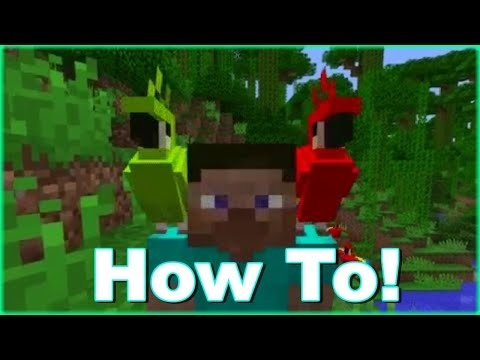 how to get a parrot on your shoulder in minecraft-0