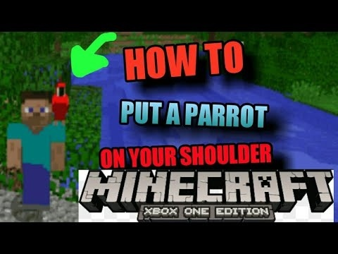 how to get a parrot on your shoulder in minecraft-1