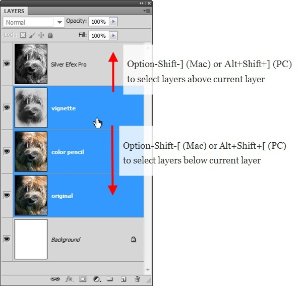 how to select multiple layers in photoshop-4
