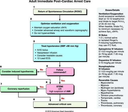 intubating a patient who is in cardiac arrest should occur after-0