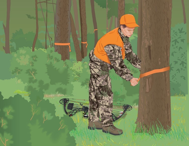which of the following should be done by a hunter who is tracking a wounded animal?-0