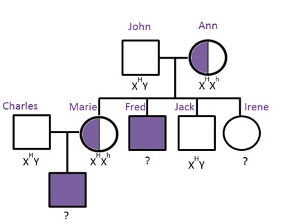 who has hemophilia in the pedigree that is shown?-1
