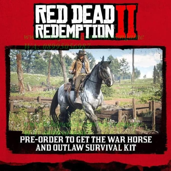 red dead redemption 2 pre order-2