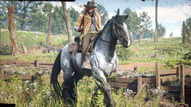 red dead redemption 2 pre order-4