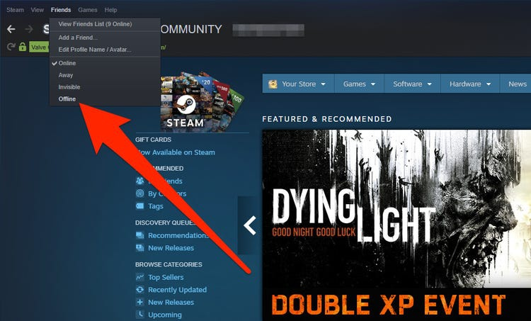how to appear offline on steam-1