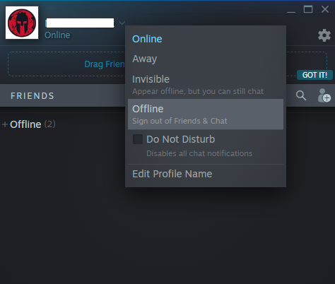 how to appear offline on steam-8
