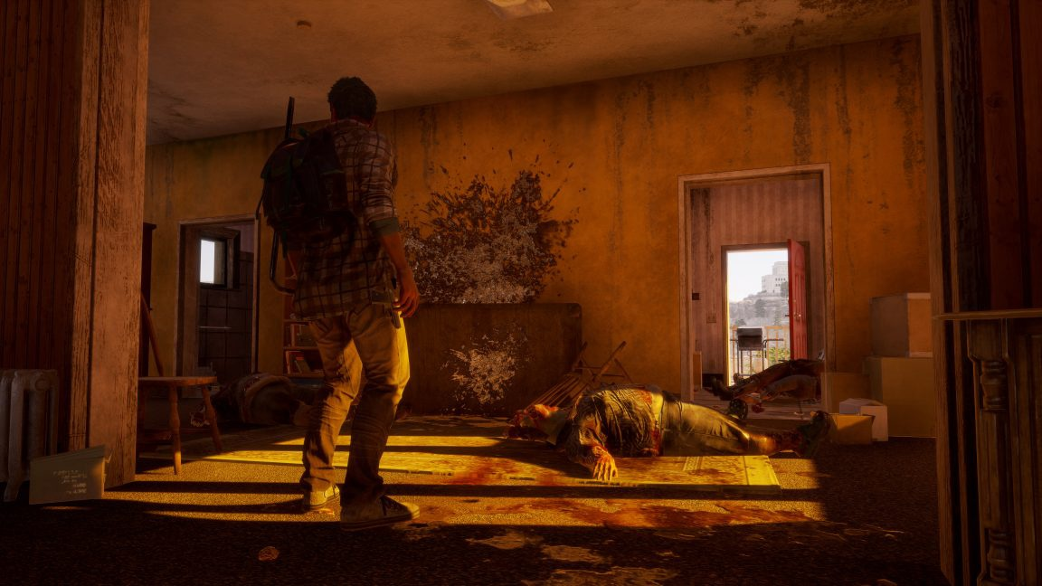 state of decay 2 coop-3